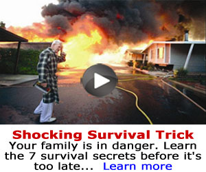 Download Family Survival System eBook