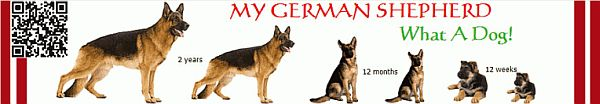 Click Here To Downlaod My German Shepherd eBook