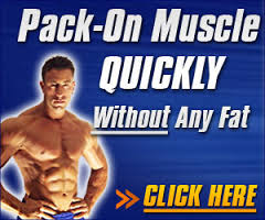 Download The Somanabolic Muscle Maximizer PDF Now