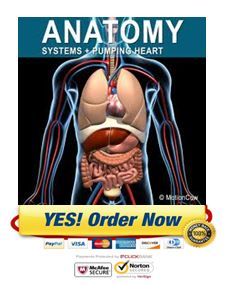 Download Human Anatomy eBook Now!