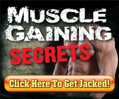 Click Here Now To Download Muscle Gaining Secrets eBook