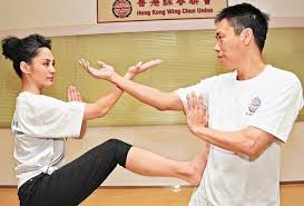 Click Here To Download Improve Your Wing Chun Online System Program