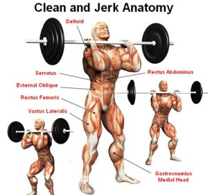 Click Here To Download The Fitness Jerk eBook Now