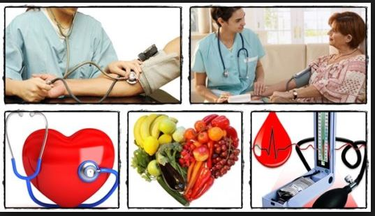 Blood Pressure Protocol program eBook